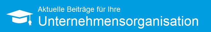it-wegweiser-unternehmensorganisation