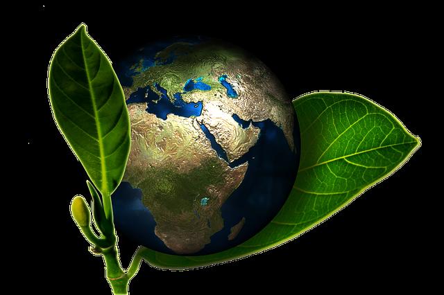 Silicon Valley - Umweltschutz
