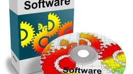 Software-Piraterie