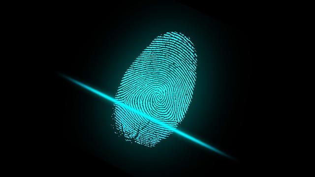Die Sicherheit bei dem Fingerabdrucksensor