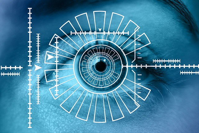 Die Sicherheit bei dem Iris-Scanner