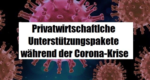 Corona-Förderungen-Privatwirtschaft-Software-IT