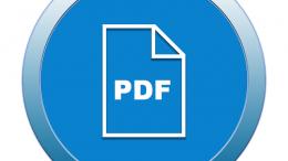 PDF-CTG-Überwachung-Digital